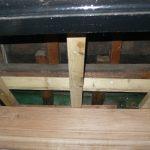 New oak cornice
