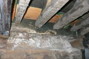 Dry rot to modern timbers (South side)