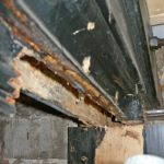 Dry rot to main beam (prior to repair)